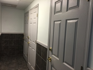 Shower room doors
